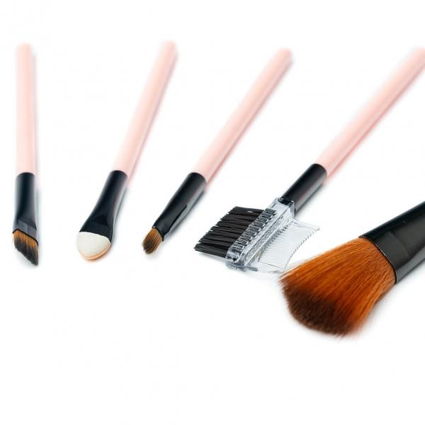 Кисточки для макияжа набор 5шт Meiyani с