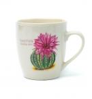 Чашка 250г-керамика кактус 30394 с